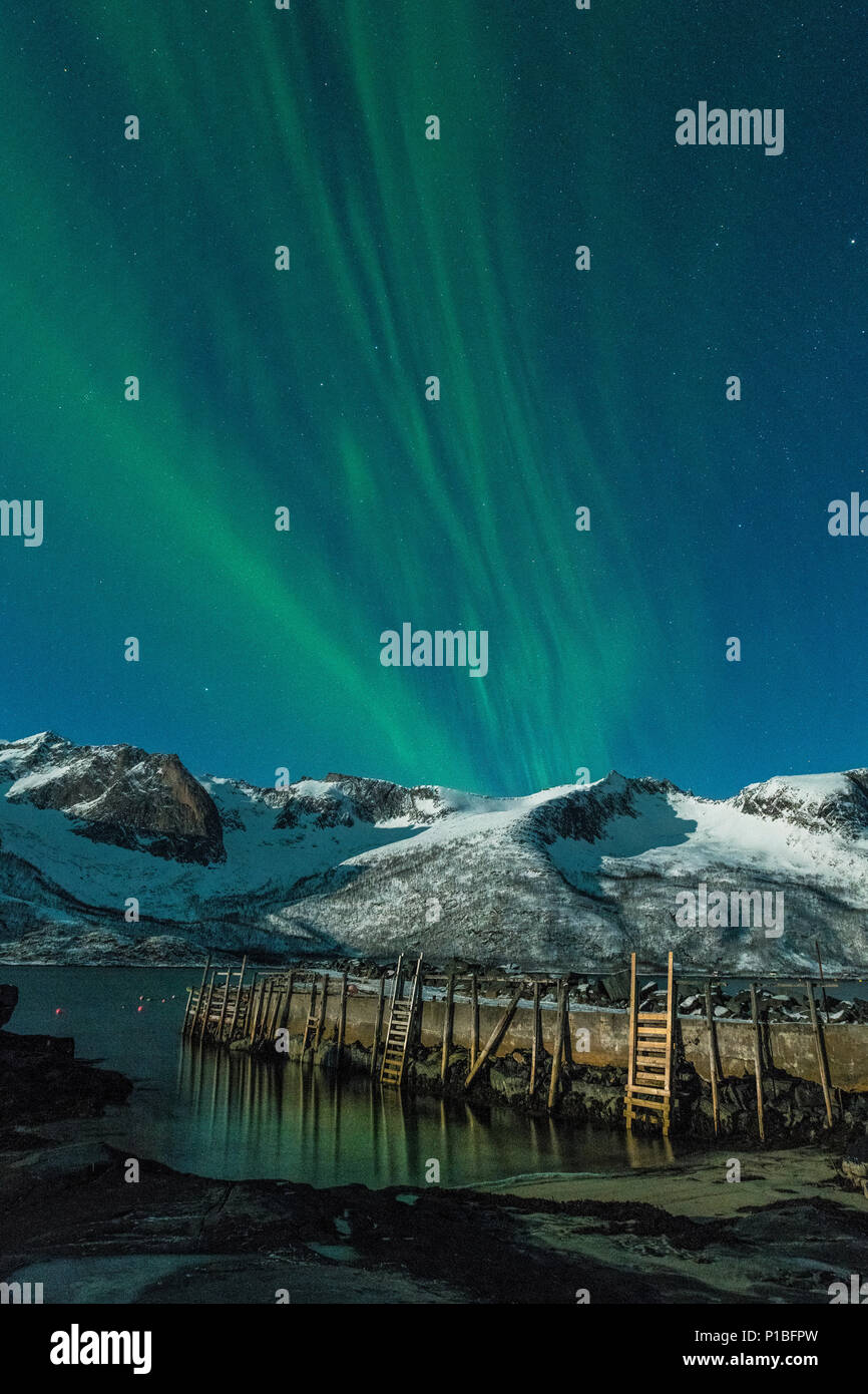 Northern lights over Baltsfjord at night, Senja, Norway - Stock Image