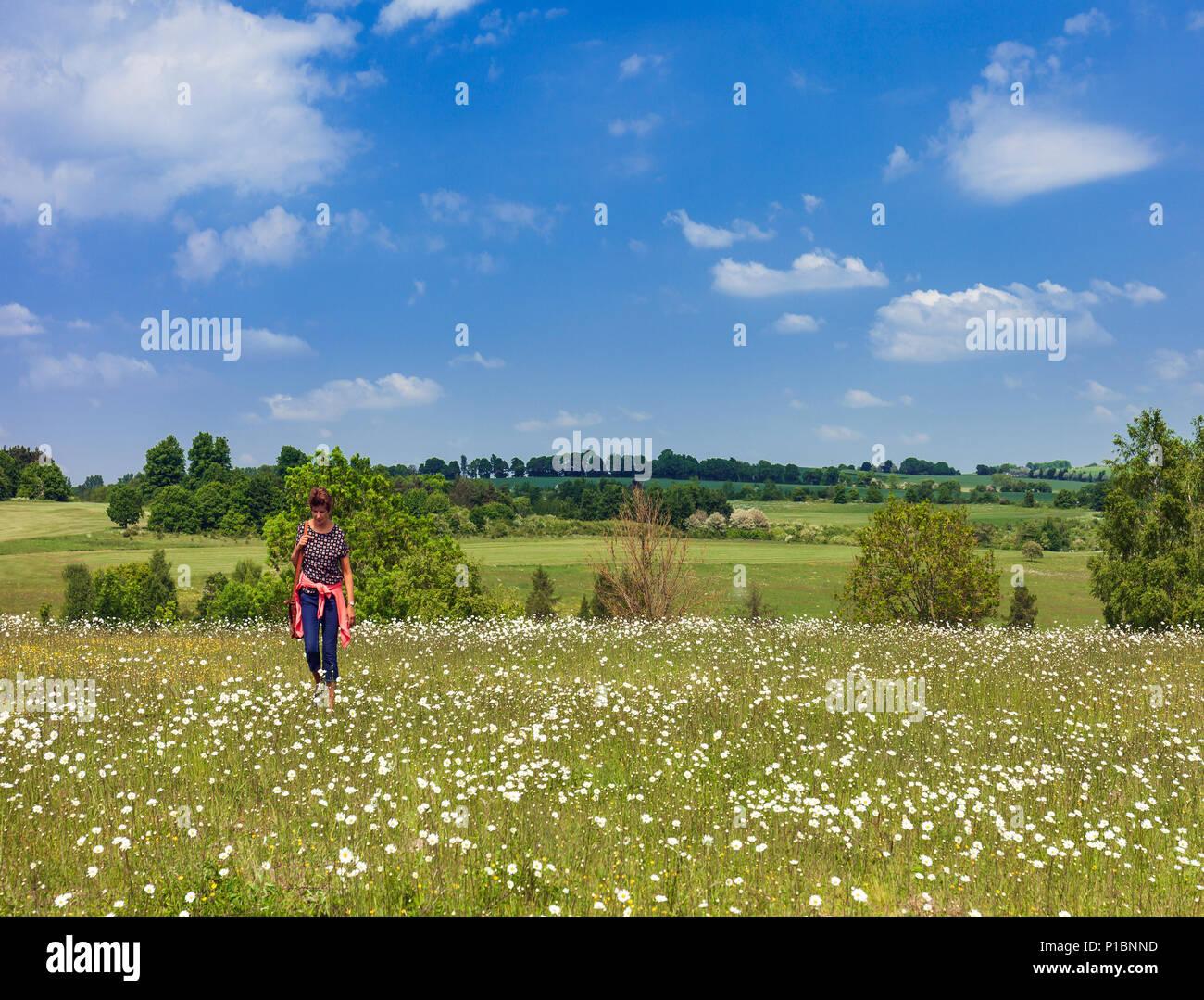 Woman walking through a wild flower meadow, Lullingstone, Kent, UK. Stock Photo