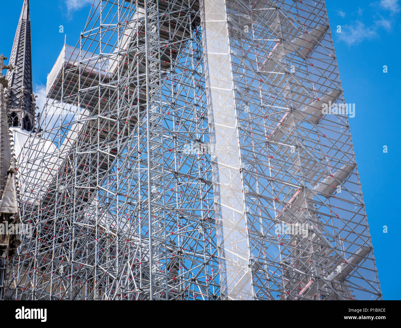 Cathedral Reims Marne Grand Est France shrouded in scaffolding - Stock Image