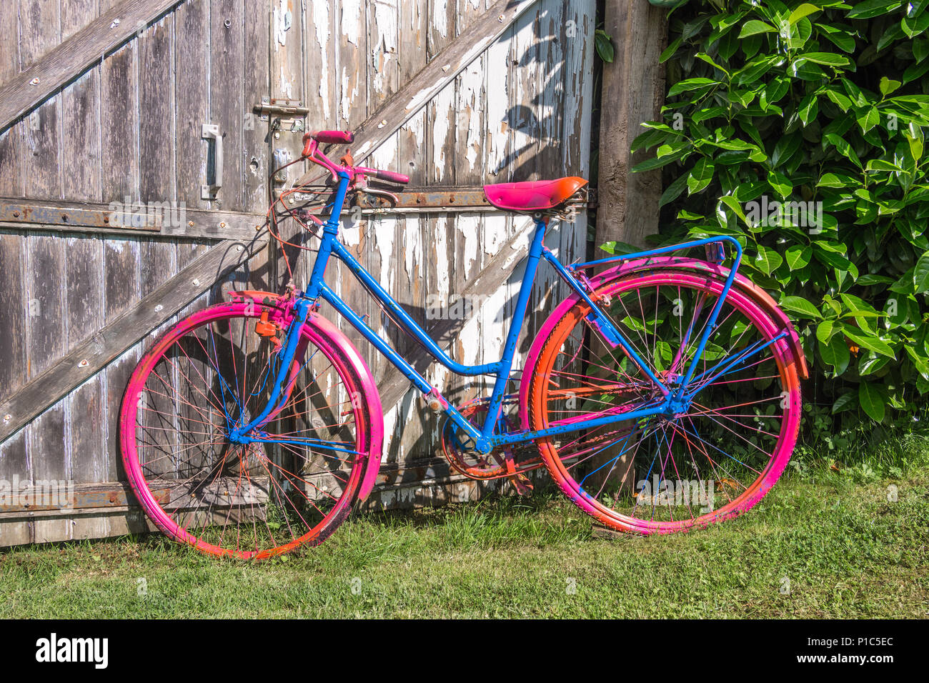 Gaily painted ladies bicycle in French garden. - Stock Image