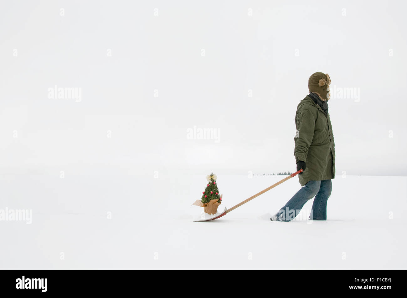 A person trudging through the snow pulling a christmas decorated rosemary bush tree behind them in a wintery landscape. Stock Photo