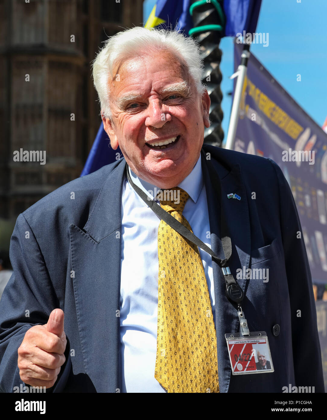 Westminster, London, UK, 11th June 2018. Lib Dem peer Lord Roberts, Baron Roberts of Llandudno, pops by to lend his support. On the day before  MPs are set to start voting on amendments to the EU Withdrawal Bill put forward by the House of Lords, anti-brexit groups stage a 36 hour 'Remainathon' in Westminster. Four different groups, SODEM, No10Vigil, EU Flag Mafia and Stop Brexit hold protests at Parliament, a vigil at Downing Street and a torch lit evening march and sleepover to the Royal Courts of Justice. Credit: Imageplotter News and Sports/Alamy Live News - Stock Image