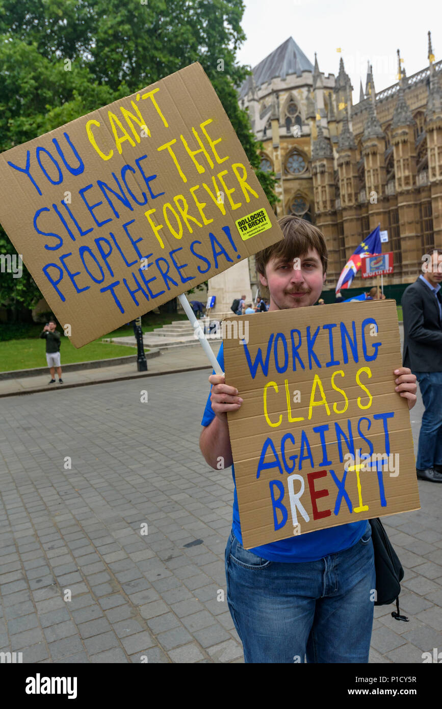 London, UK. 12th June 2018. Protesters continue their protests outside Parliament calling for an end to the process of leaving Europe with a 'Pies Not Lies' Remainathon during the parliamentary debate on the European Union (Withdrawal) Bill. The Stand of Defiance European Movement, SODEM, started by Steven Bray in September 2017 have continued to protest every day that MPs are in session. it that t Credit: Peter Marshall/Alamy Live News - Stock Image