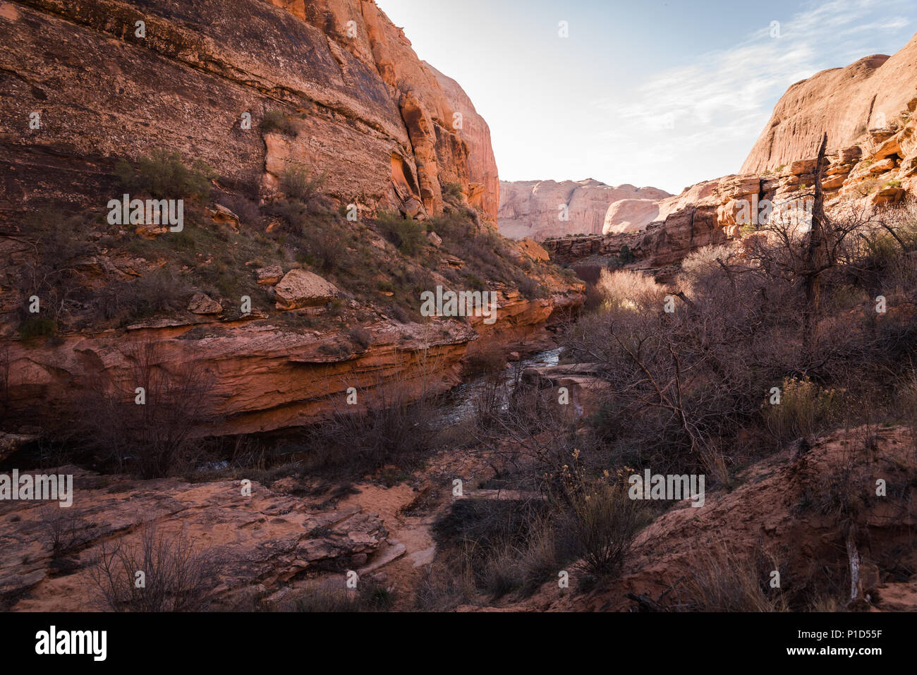 Landscape view in a valley on a trail in Moab, Utah. - Stock Image