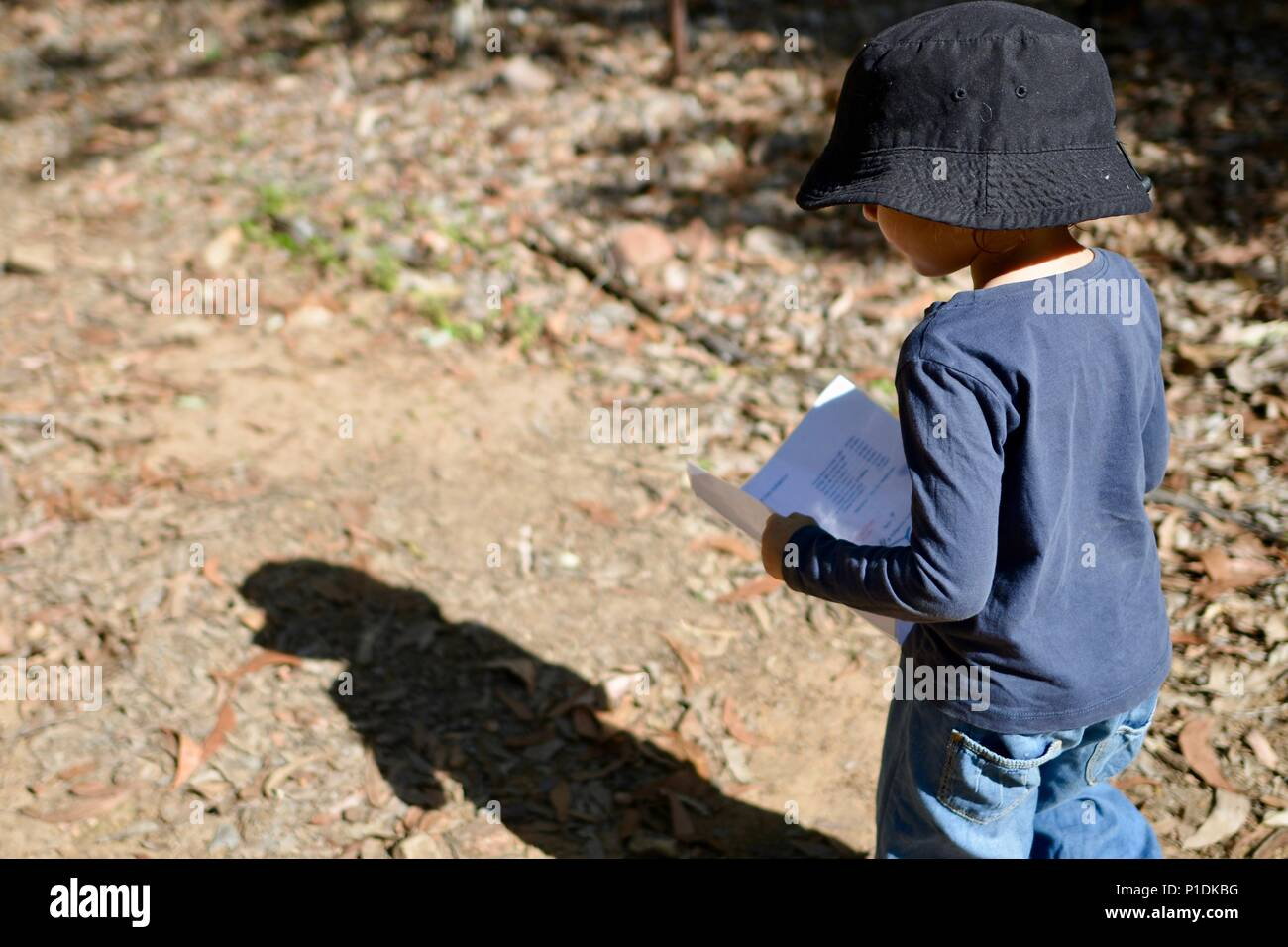 Young Australia Map.Young Girl Walks With A Map On A Track Through A Forest Paluma