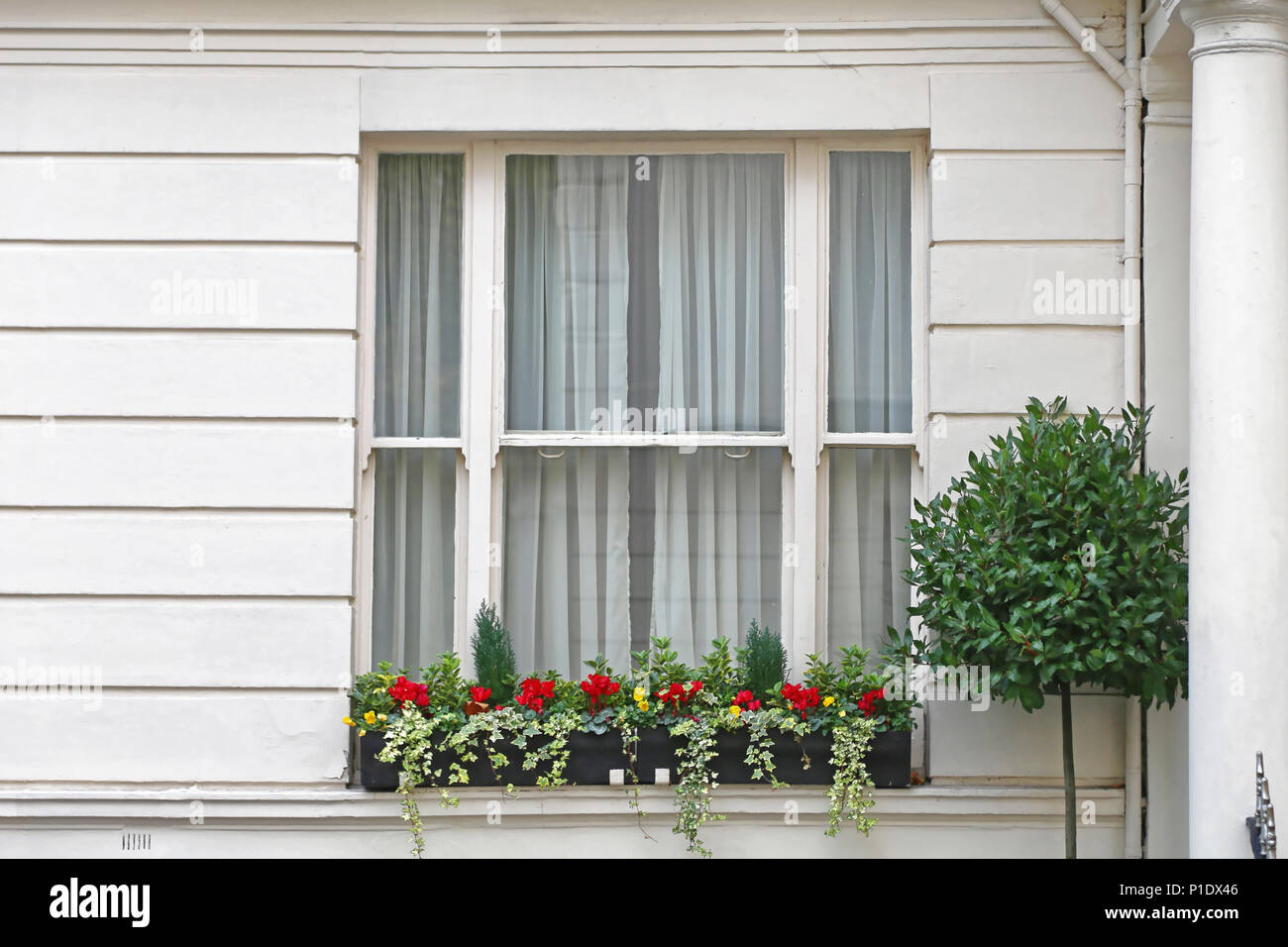 Big Window With Flowers At White House In London Stock Photo