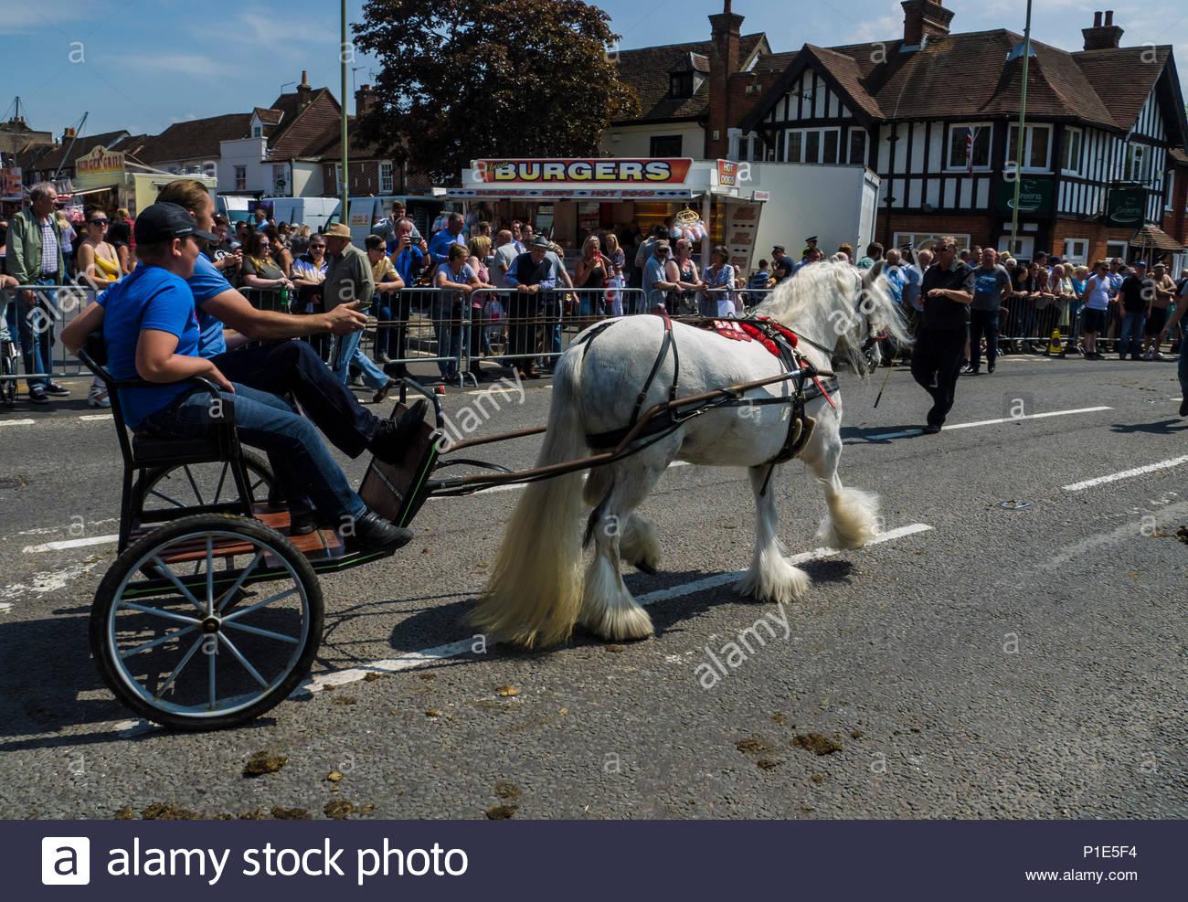 Wickham Horse Fair 2018 - Stock Image