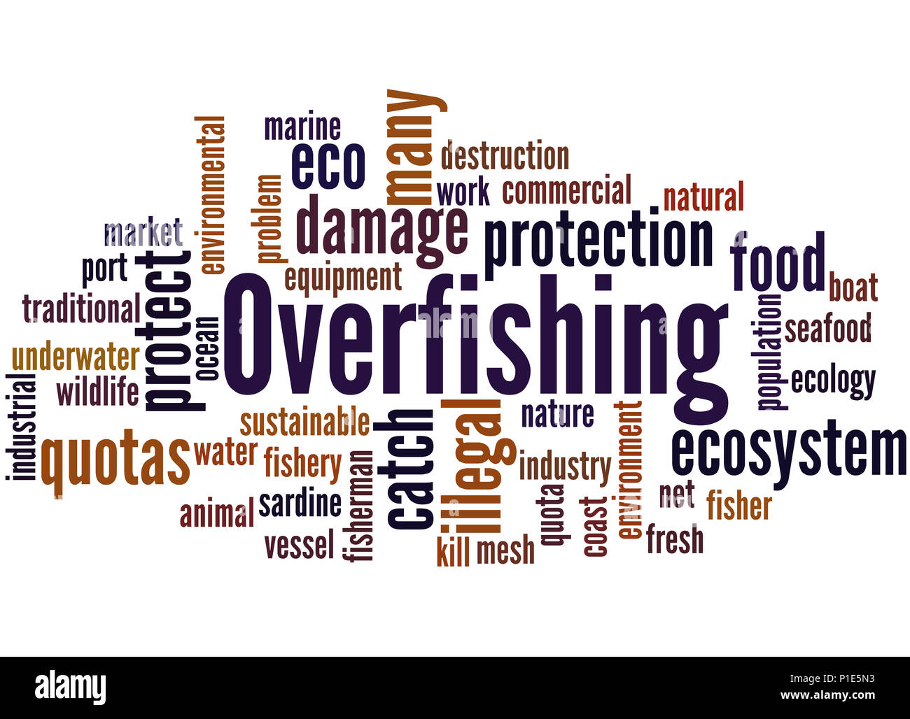 Overfishing, word cloud concept on white background. - Stock Image