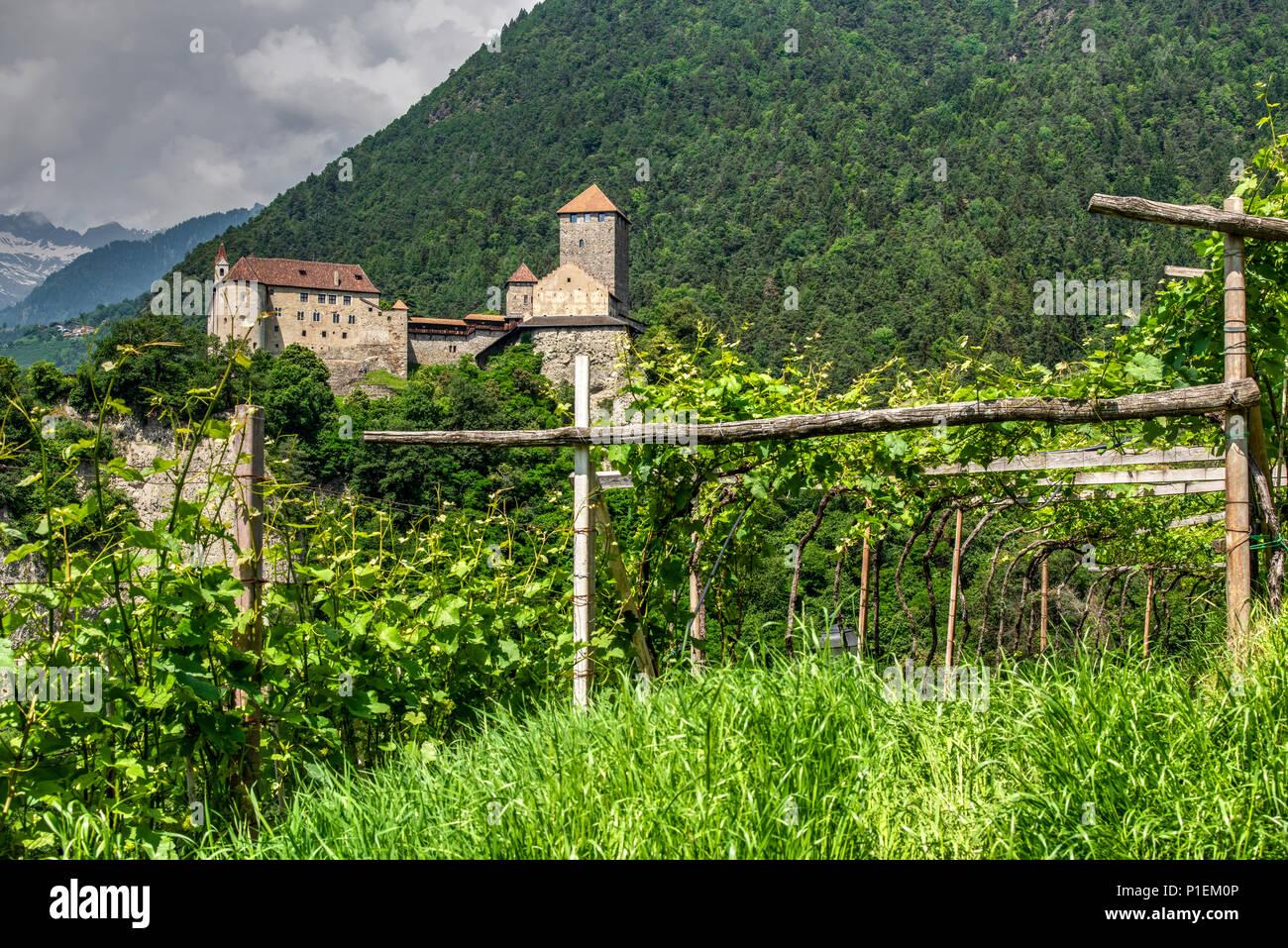 Tirol Castle or Castel Tirolo, Tirolo - Tirol, Trentino Alto Adige - South Tyrol, Italy - Stock Image