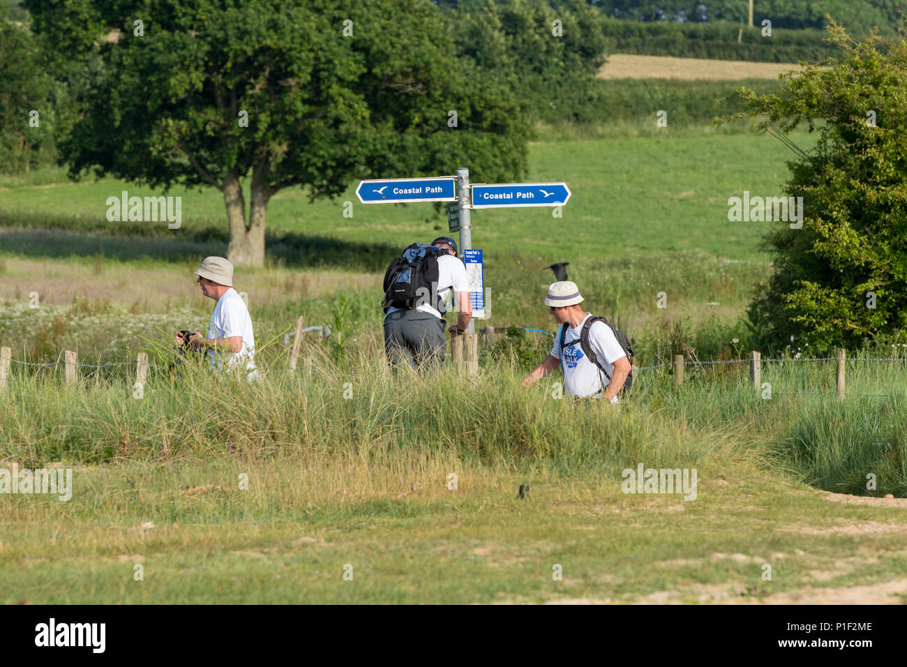 three men walking the isle of wight coastal path wearing hats in the hot weather to protect against sunburn. trekking, rambling and walking on island. - Stock Image
