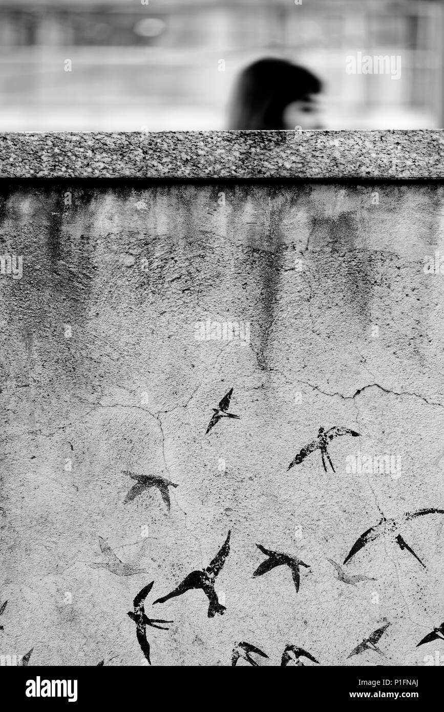 Girl walking behind a concrete wall with painted birds - Stock Image