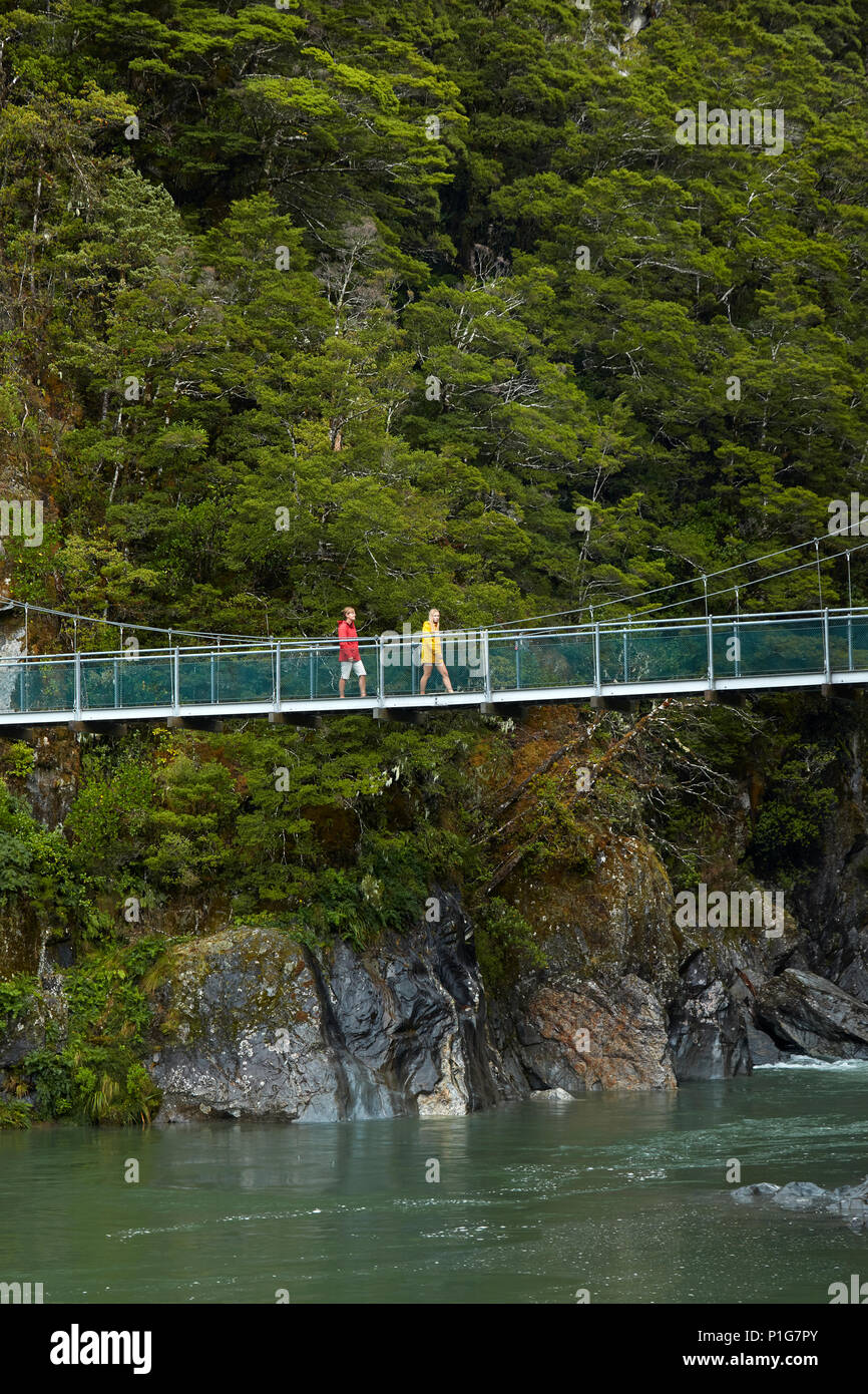 Tourists on footbridge, Blue River, Blue Pools, Mount Aspiring National Park, Haast Pass, Makarora, Otago, South Island, New Zealand (model released) - Stock Image