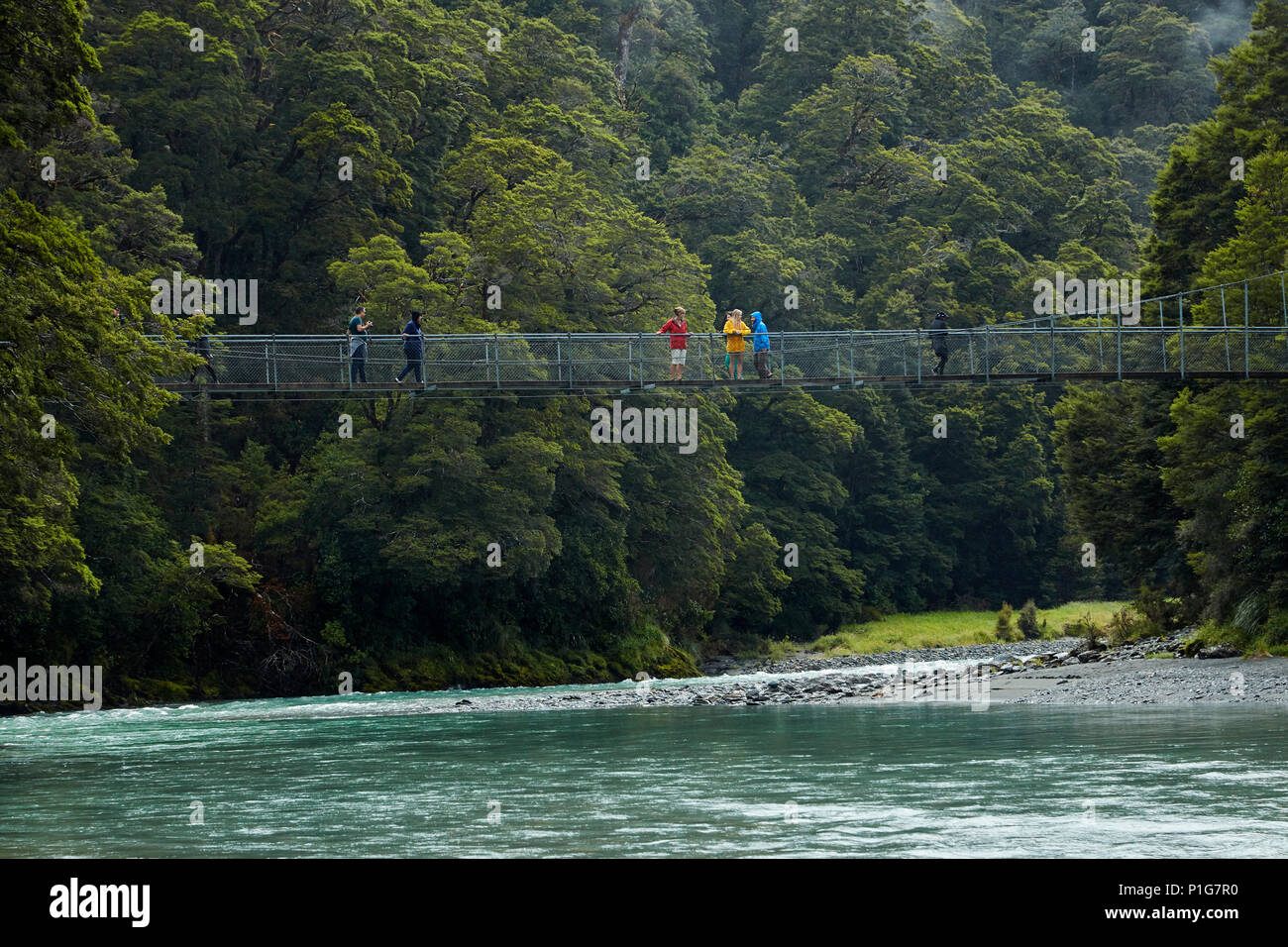 Tourists on footbridge over Makarora River, Blue Pools, Mount Aspiring National Park, Haast Pass, near Makarora, Otago, South Island, New Zealand - Stock Image