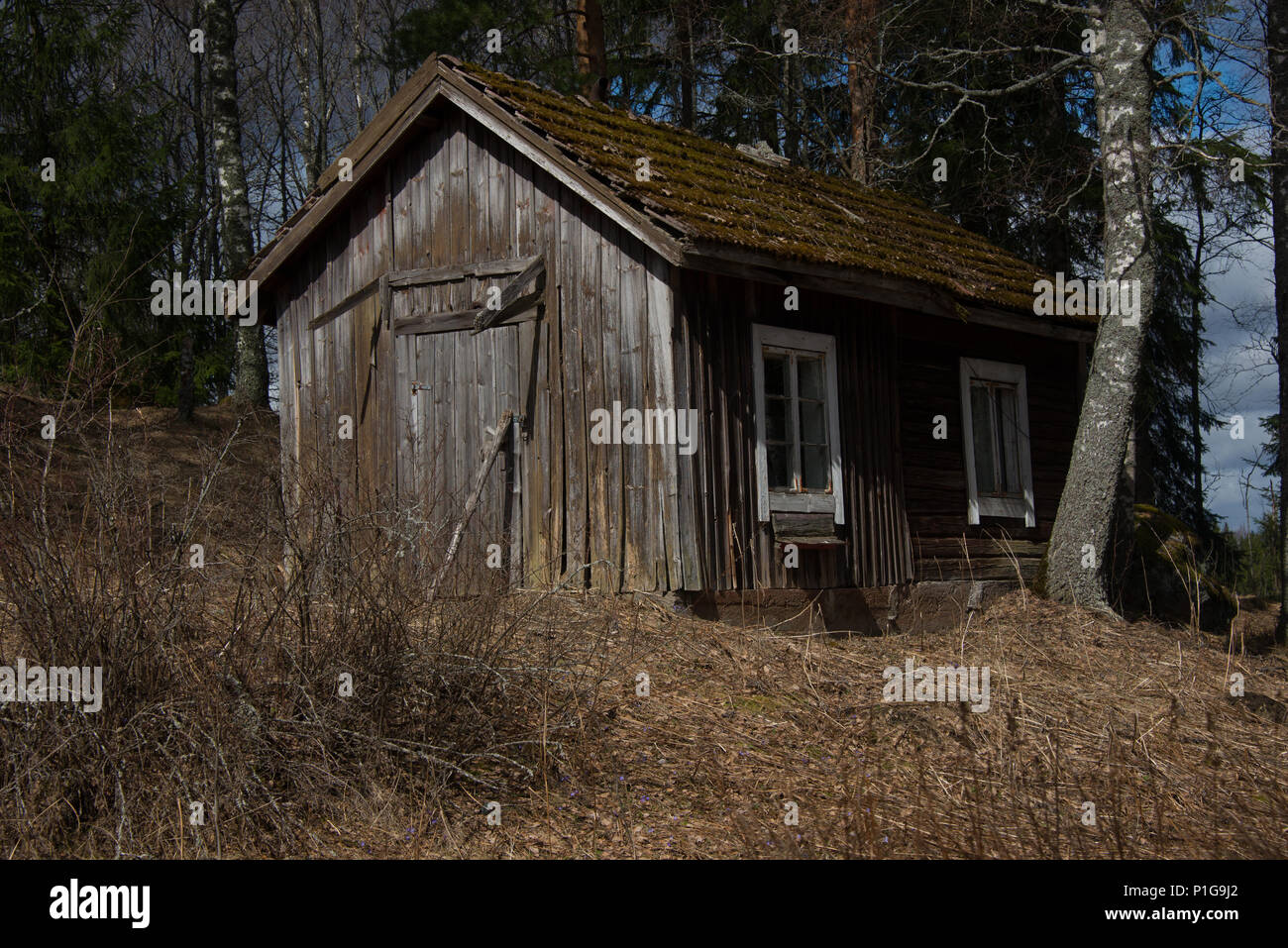 Forlorn. Hausjärvi, Finland. 21.4.2018 - Stock Image