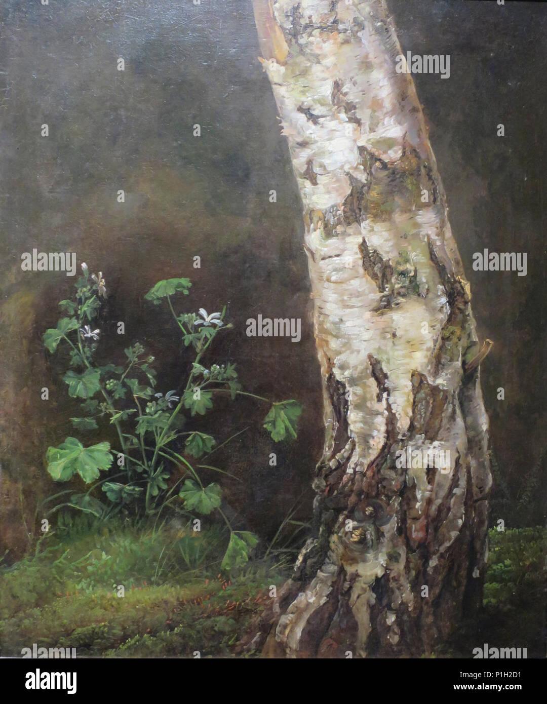'Study of a Birch Tree' by Johan Christian Dahl, Bergen Kunstmuseum. Stock Photo