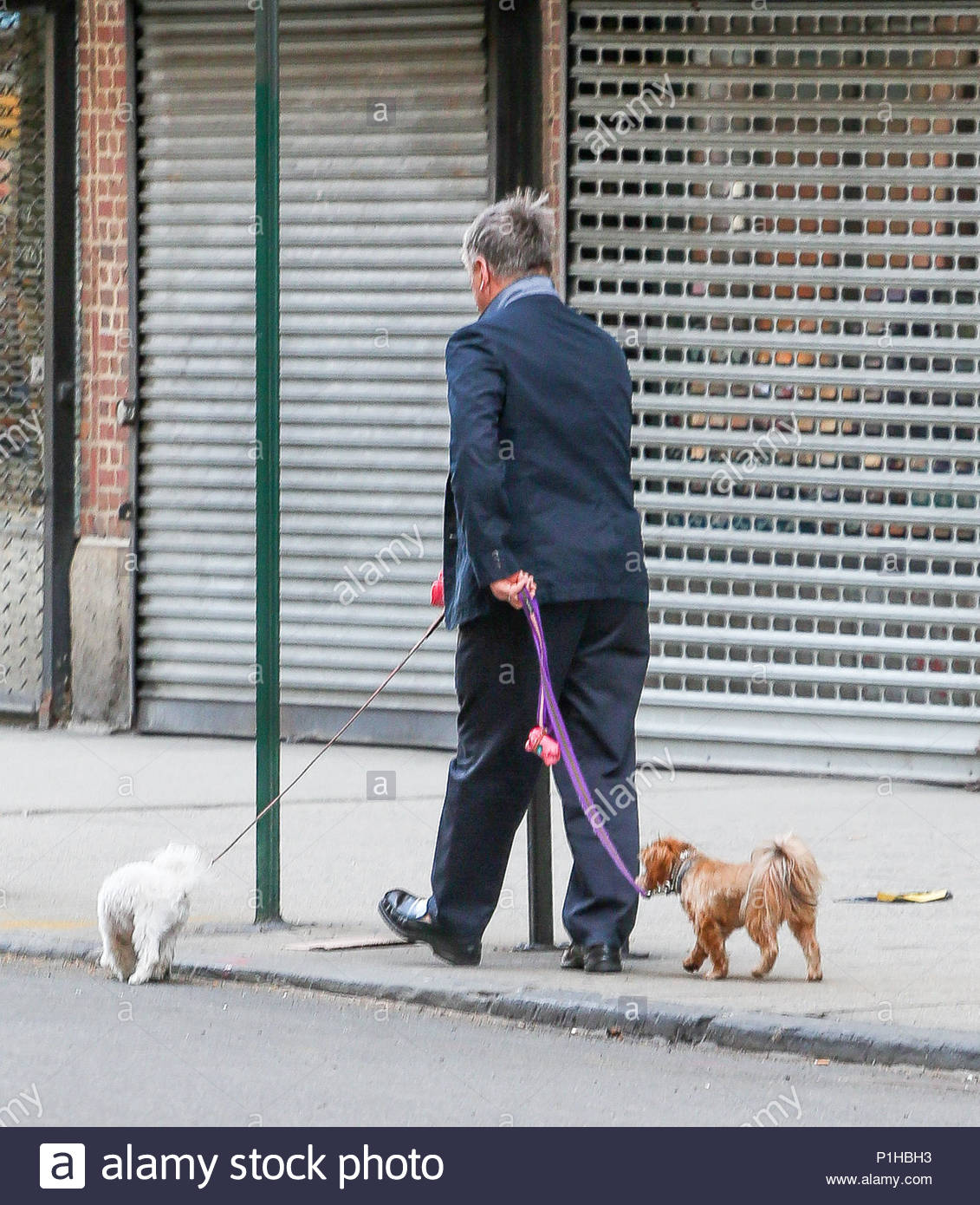 alec baldwin is seen walking his dogs and grabbing a cup of coffee near his home in new york city this morning baldwins daughter