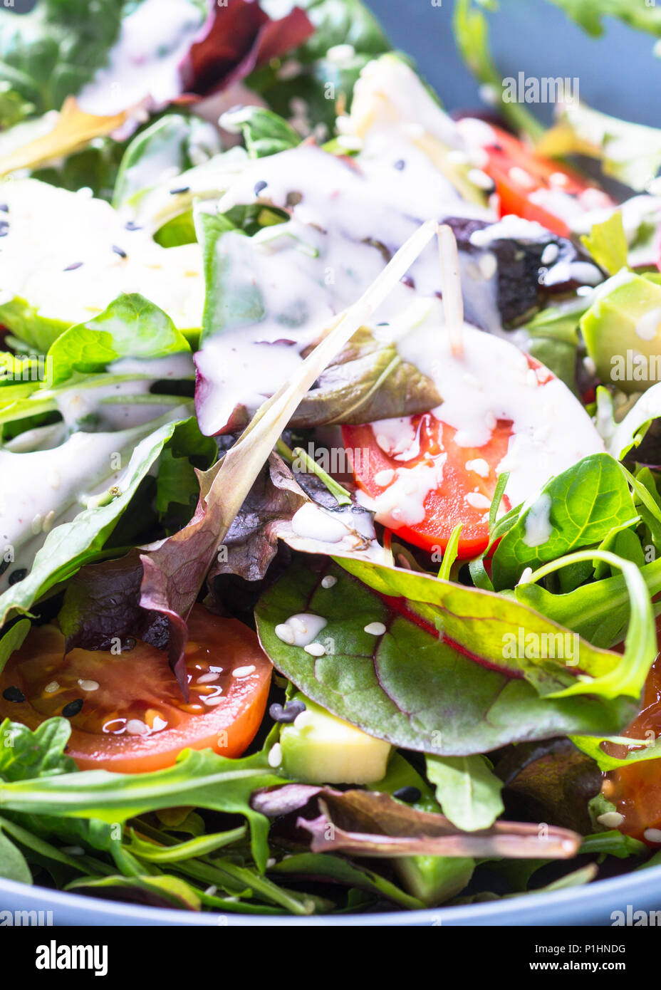 Fresh green salad with mixed green leaves, tomatoes and avocado with sesame and yogurt dressing. Close up. - Stock Image