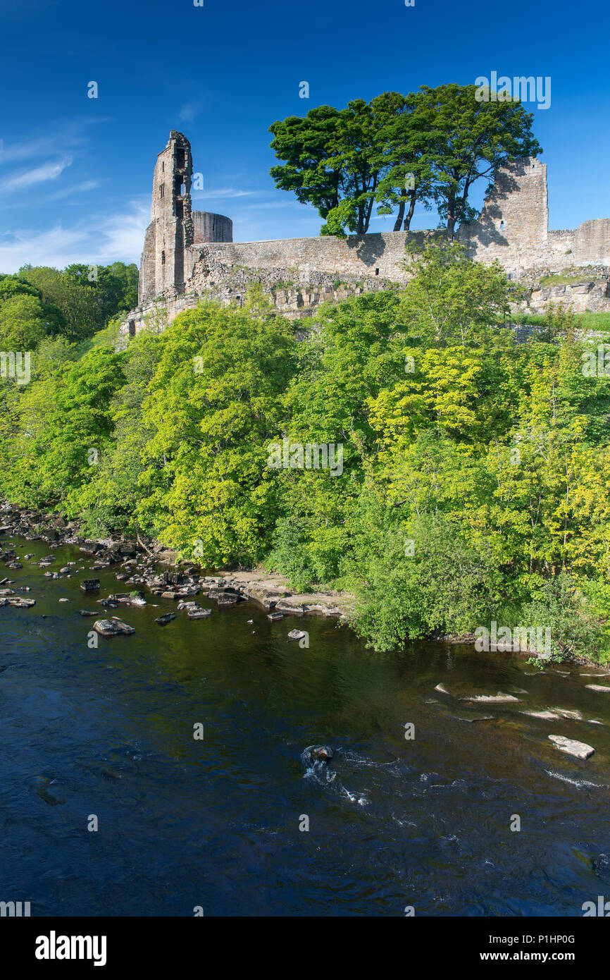 Barnard Castle, built in 12th century, set on the edge of the River Tees in Co. Durham, UK. - Stock Image