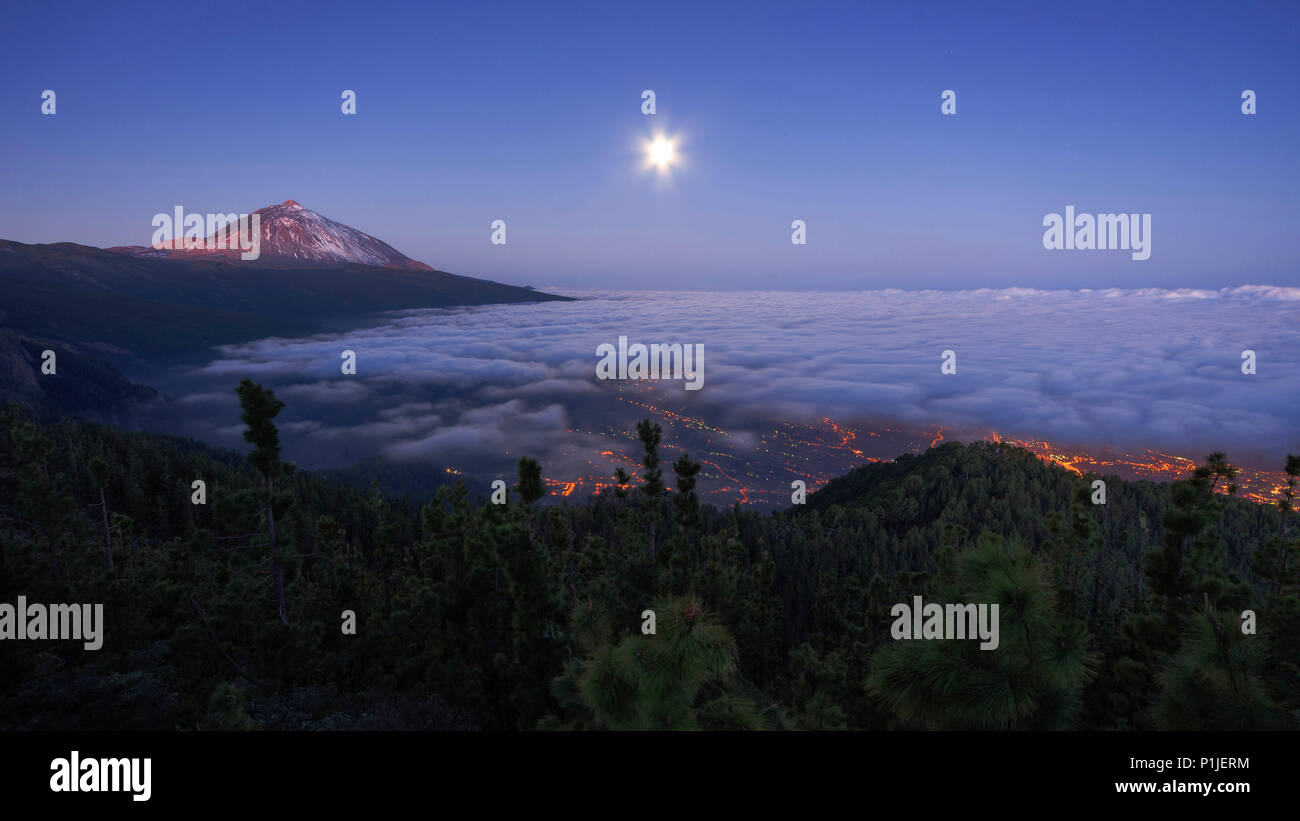 Teide with cloud cover at moonlight and blue hour, Tenerife, Canary Islands, Spain - Stock Image