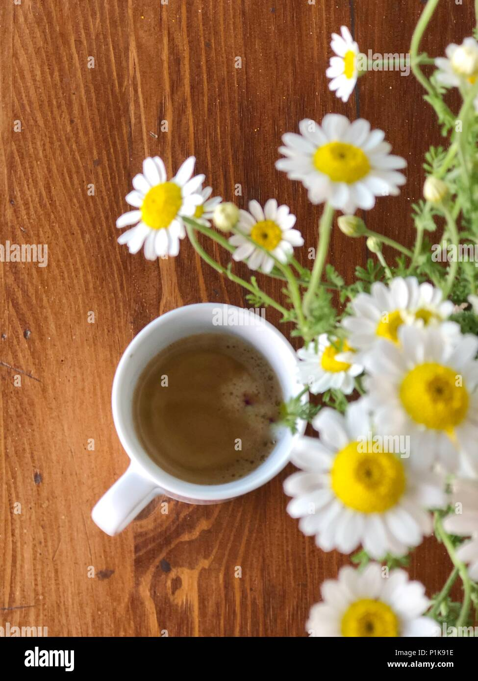 Cup of coffee and daisy flowers stock photo 207563258 alamy cup of coffee and daisy flowers izmirmasajfo