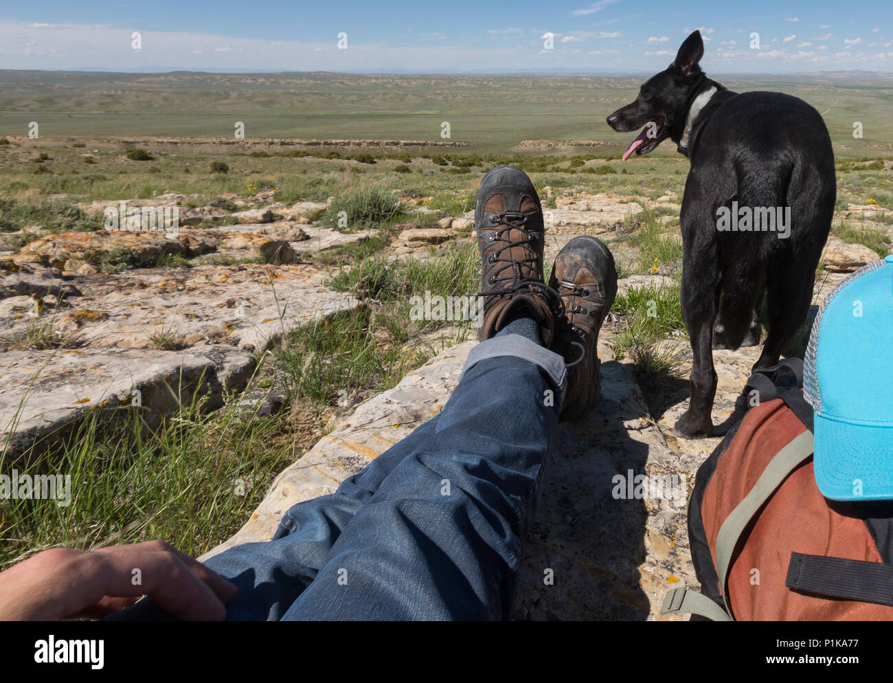 Man sitting on rocks with his dog, Wyoming, America, USA - Stock Image