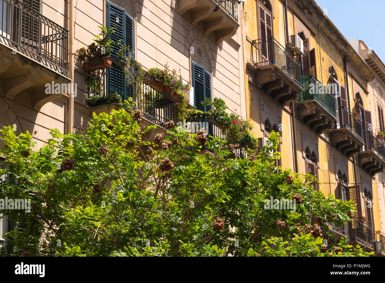 Italy Sicily Palermo typical block blocks of flats apartments condos with balconies potted plants planters flowers flora window boxes air con units - Stock Image