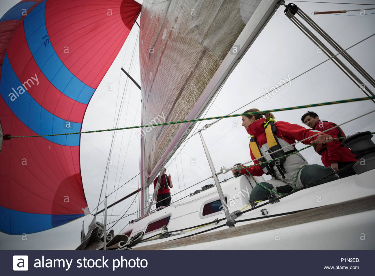 Sailing team adjusting sail on sailboat - Stock Image