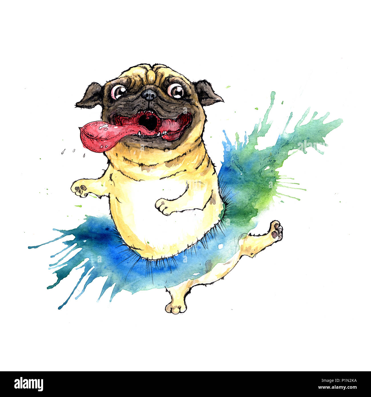 Happy pug in tutu dress - Stock Image