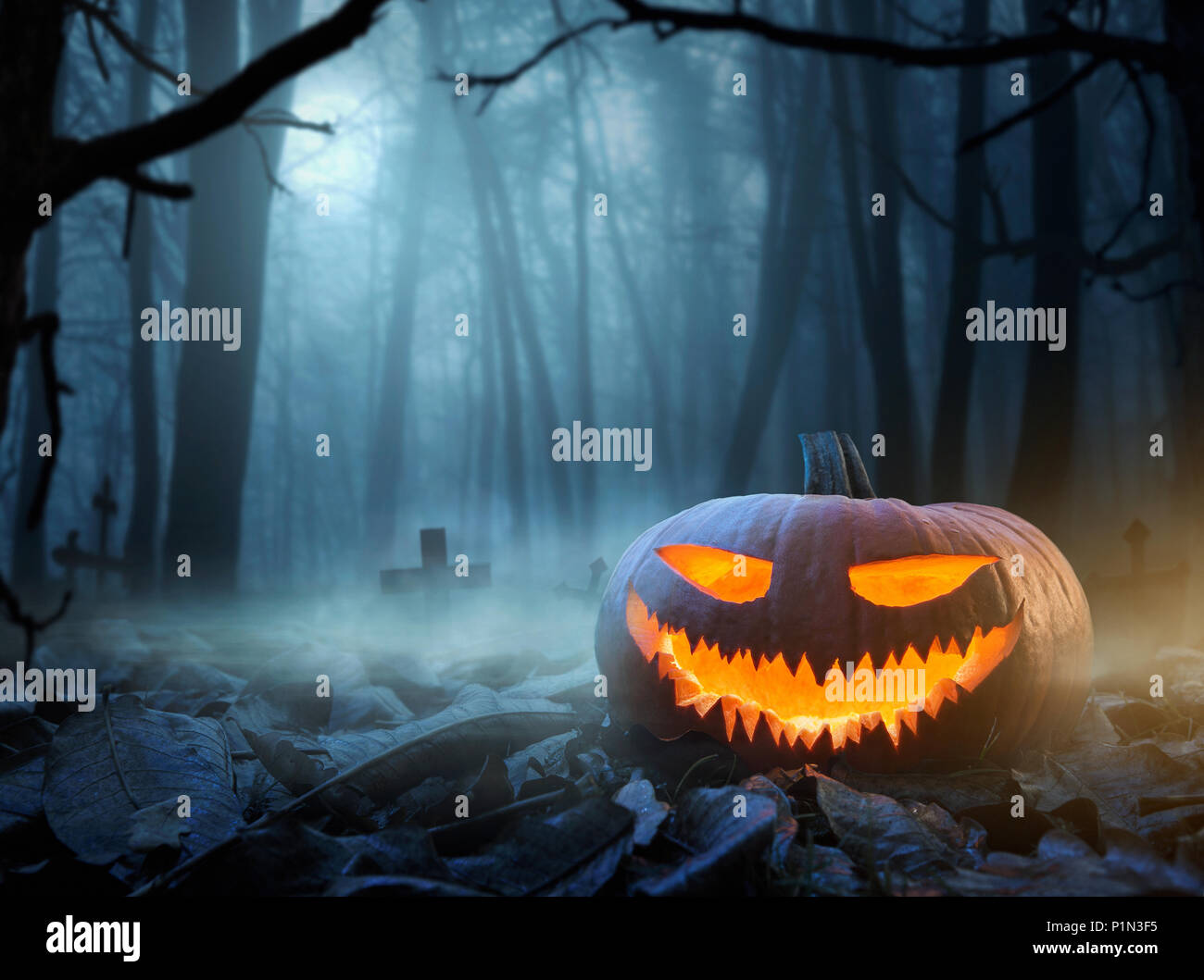 Halloween background, close up of Jack o Lantern pumpkin in the spooky forest at night with copy space - Stock Image