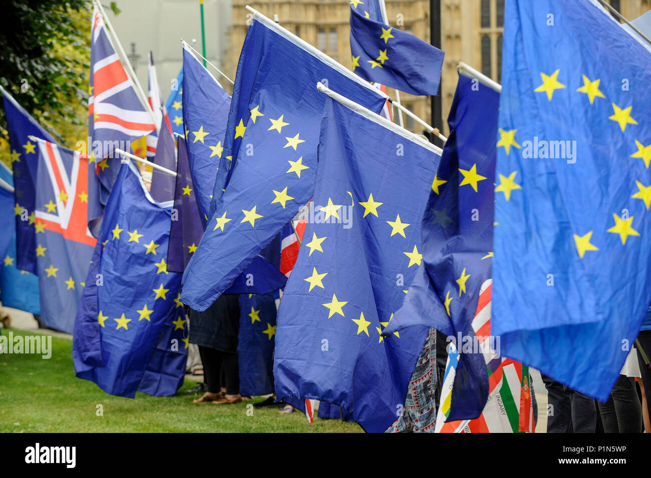 London, UK.  12 June 2018.  Anti-Brexit protesters carrying European Union flags demonstrate outside the Houses of Parliament as MPs begin two days of debate and vote on amendments to the EU Withdrawal Bill.   Credit: Stephen Chung / Alamy Live News - Stock Image