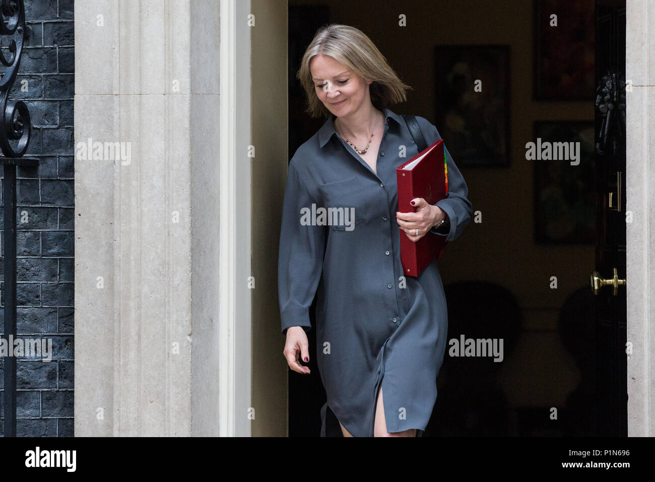 London, UK. 12th June, 2018. Elizabeth Truss MP, Chief Secretary to the Treasury, leaves 10 Downing Street following a Cabinet meeting held prior to the House of Commons debate and votes on amendments proposed by the House of Lords to the EU Withdrawal Bill. Credit: Mark Kerrison/Alamy Live NewsStock Photo