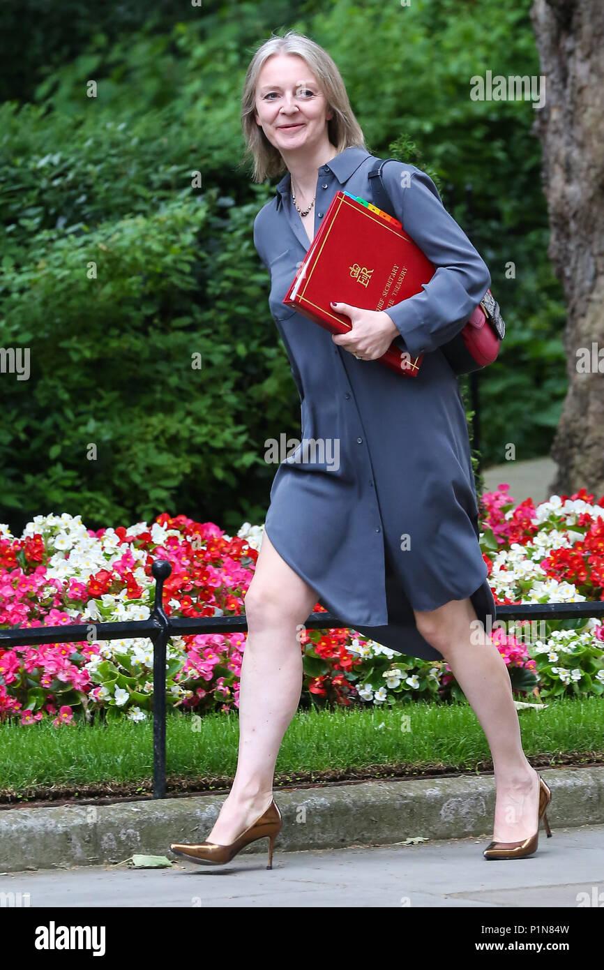 Downing Street. London. UK 12 June 2018 - Liz Truss ...