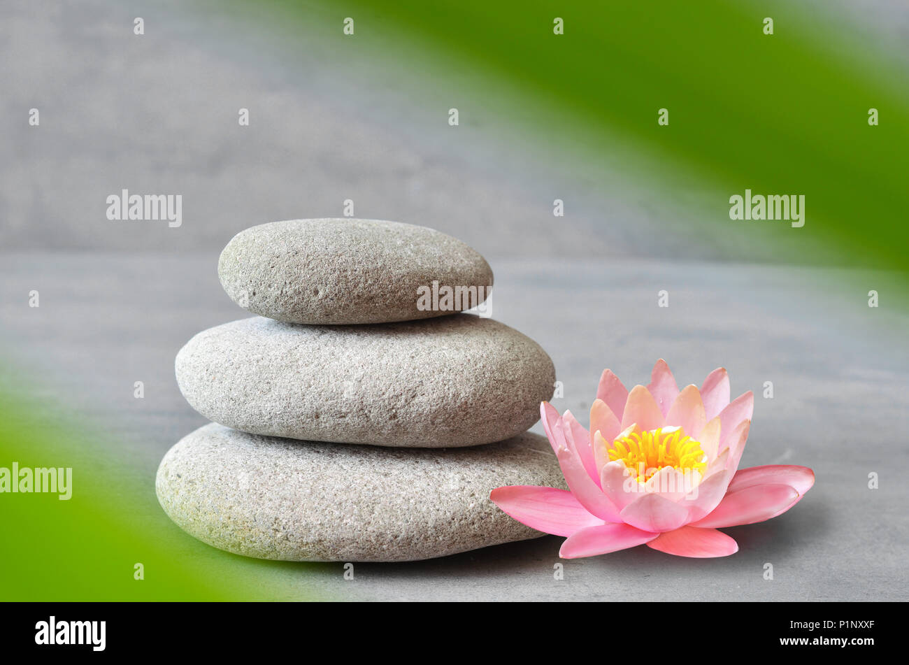 Stones, pink flower lotus and green palm leaf balance. Zen and spa concept. - Stock Image