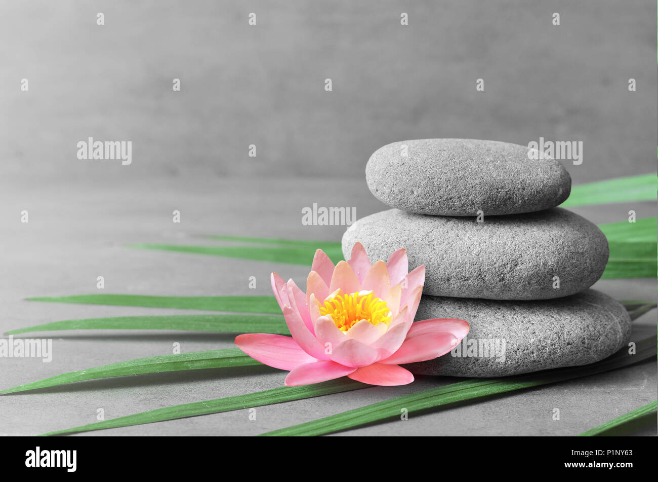 Stones balance pink flower lotus and green palm leaf zen and spa stones balance pink flower lotus and green palm leaf zen and spa concept izmirmasajfo