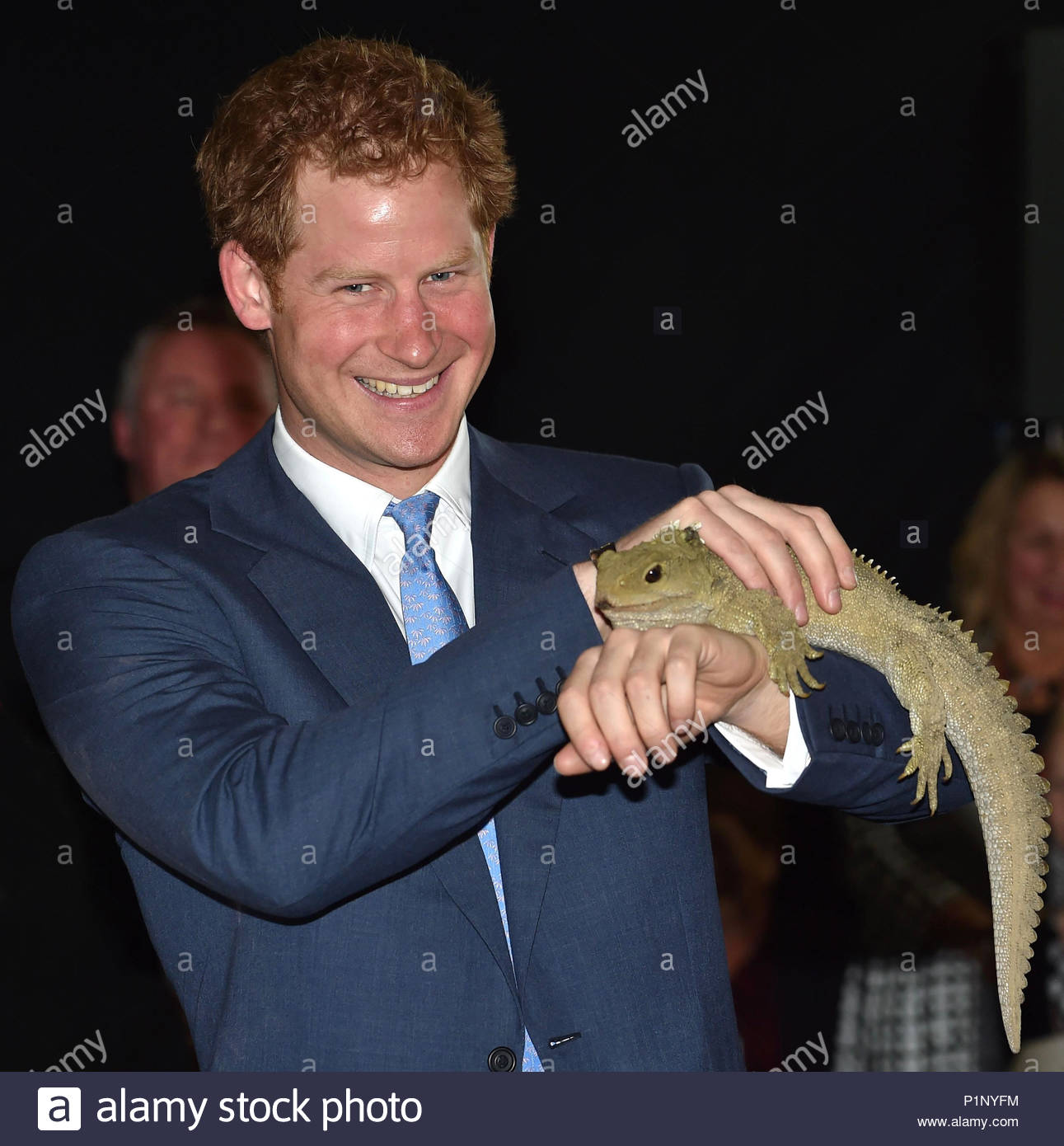 Prince Harry Receives A Ngai Tahi Iwi Welcome And Meets Henry The Tuatara At Invercargill Airport In New Zealand On May 10 2015