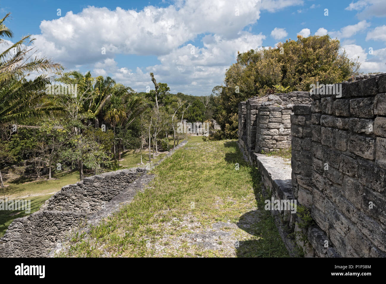The ruins of the ancient Mayan city of Kohunlich, Quintana Roo, Mexico - Stock Image