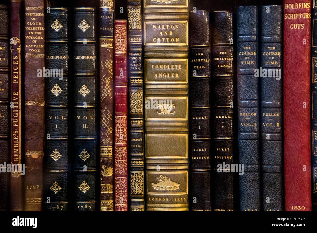 Spines of old hardback antique books on a shelf - Stock Image