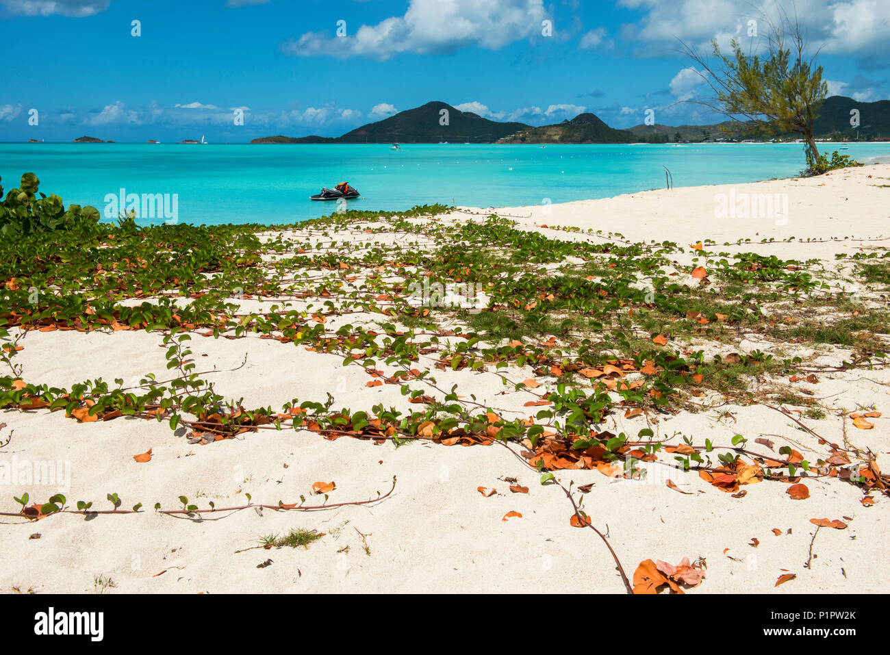 Personal watercraft at Jolly Harbour beach; Antigua and Barbuda - Stock Image