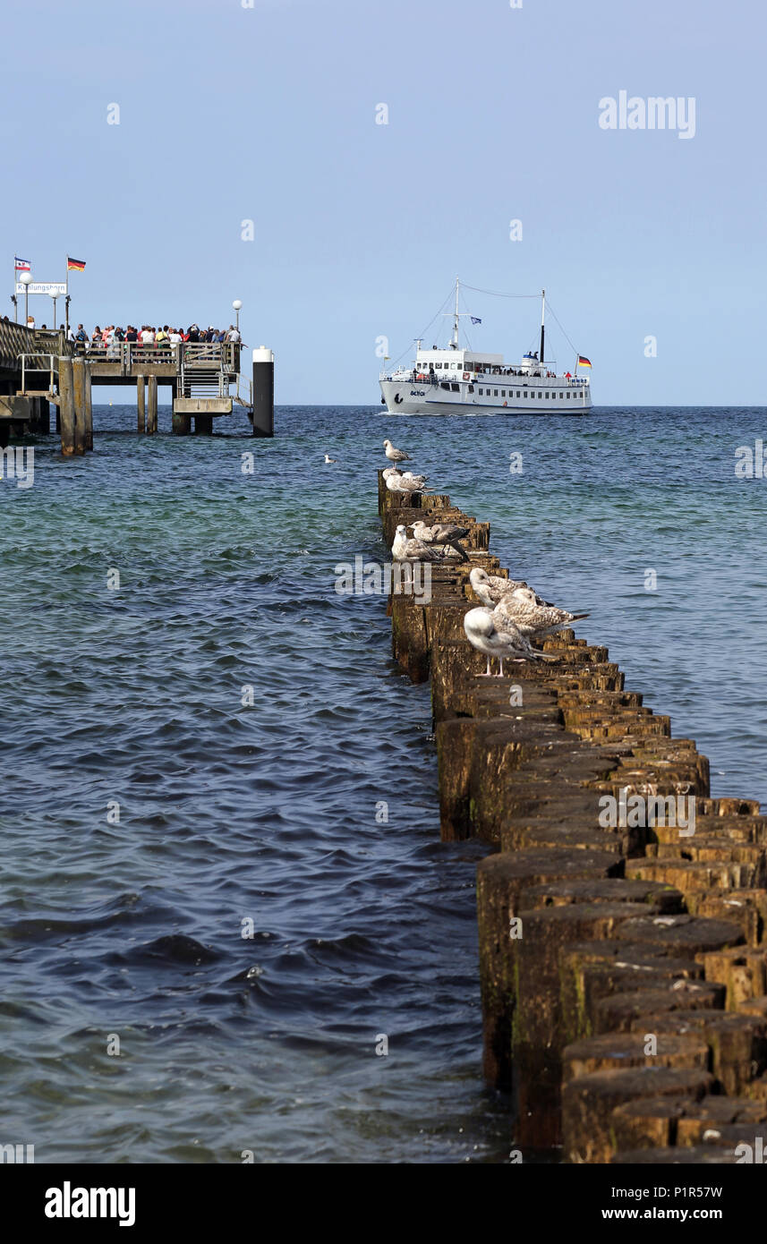 Kuehlungsborn, Germany, passenger ship MS Baltica shortly before landing at the Seebruecke - Stock Image
