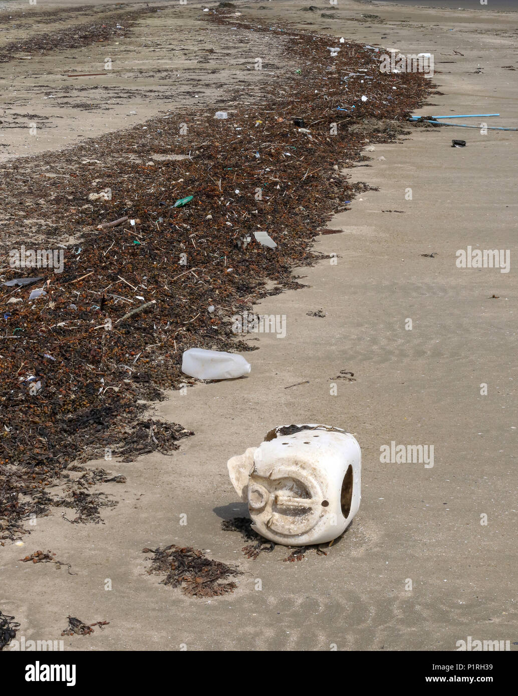 Plastic on UK beach. Seaweed is littered with discarded plastic and other rubbish lies on beach. - Stock Image