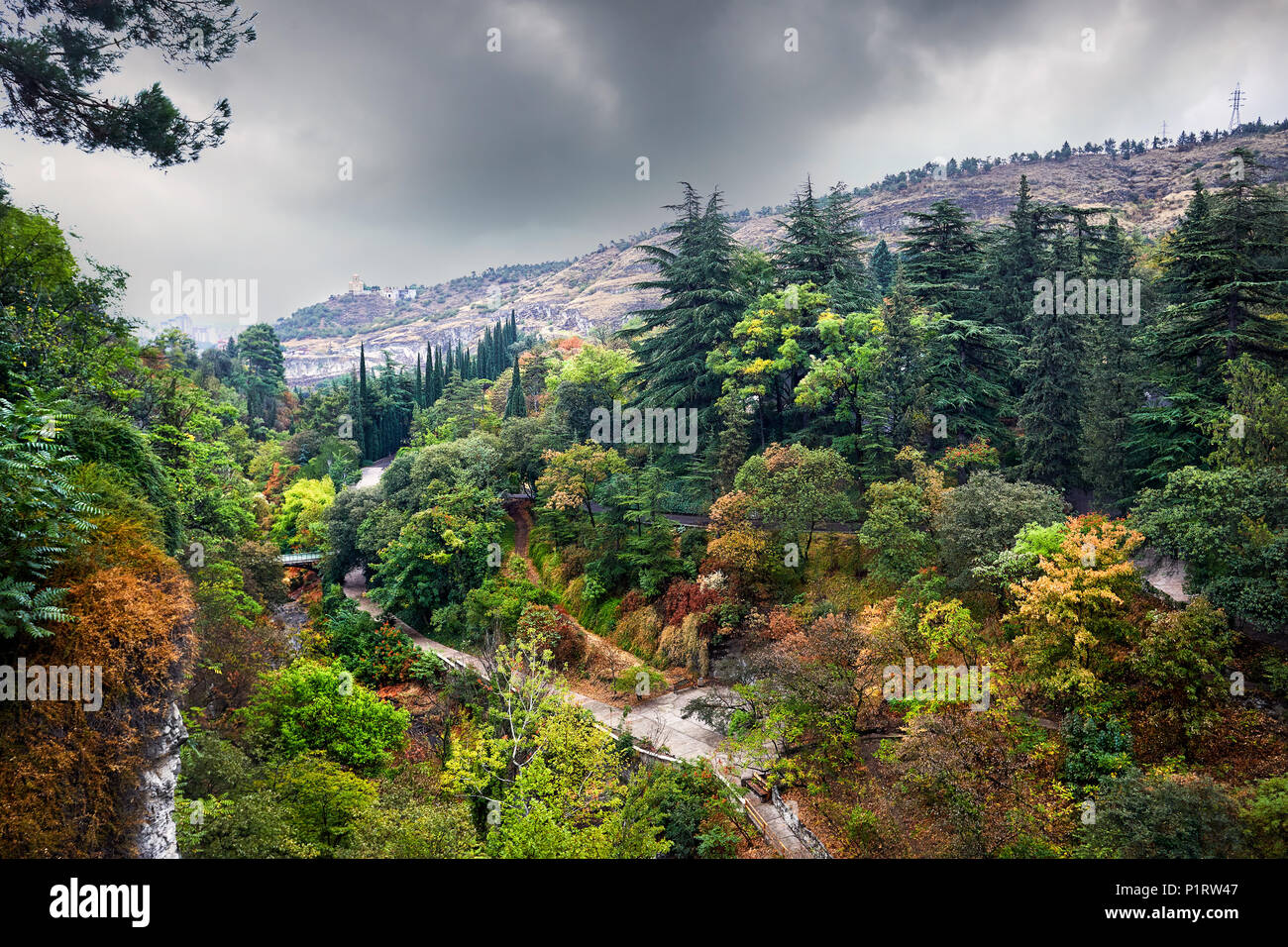 Aerial view of Botanical Garden with autumn trees at overcast cloudy sky in Tbilisi, Georgia - Stock Image