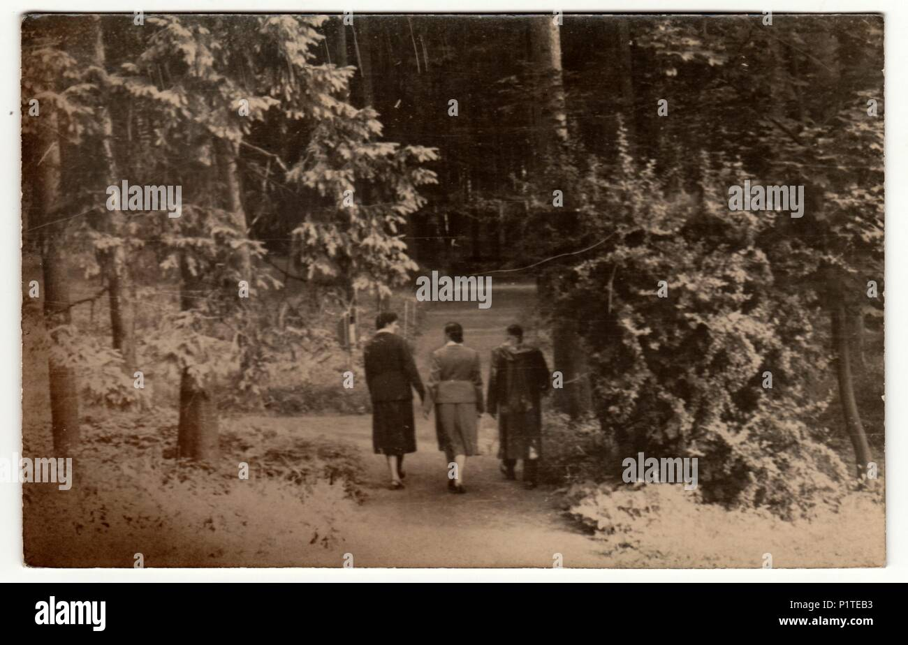 THE CZECHOSLOVAK REPUBLIC CIRCA 1930s Vintage Photo Shows People Go For A Walk In The Forest Retro Black White Photography