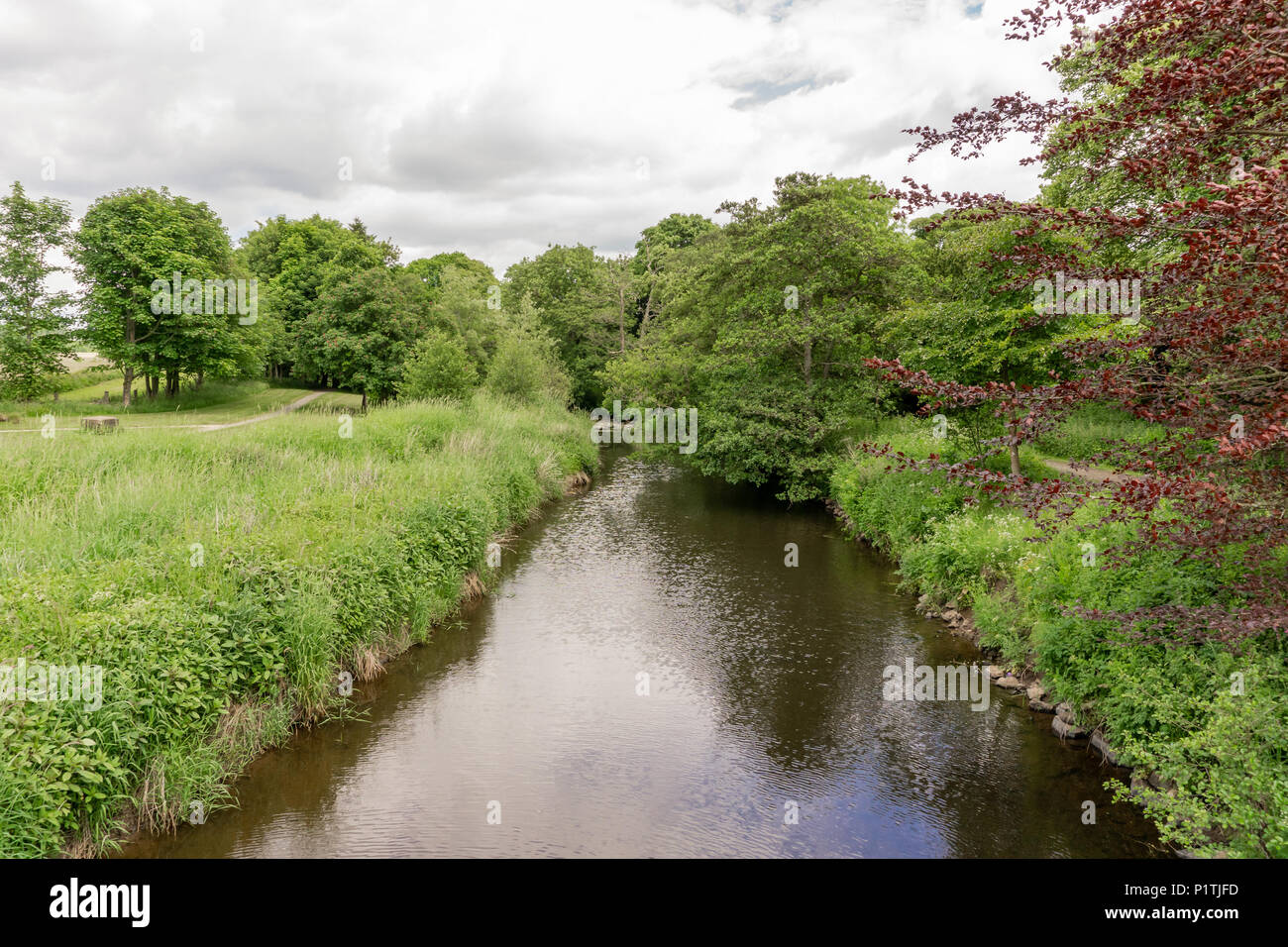 Gentle flowing Scottish Burn or river with reflections on the water. A good image that shows Scotlands countryside in summer. - Stock Image