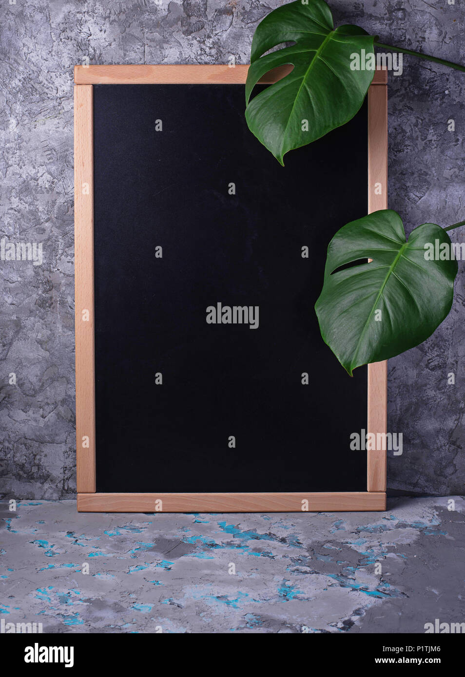 Empty chalkboard  and monstera leaves  - Stock Image