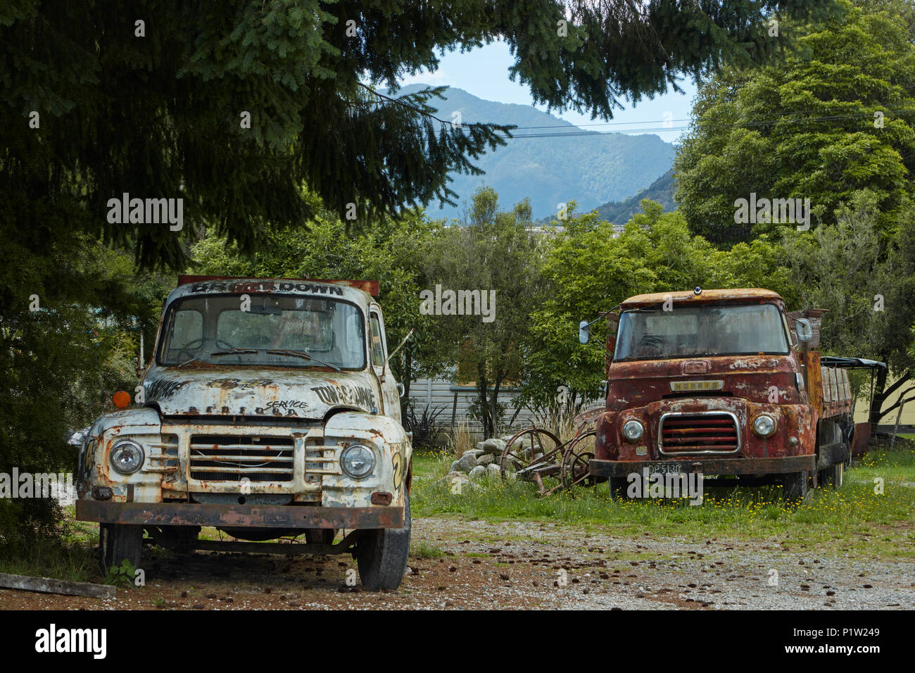 Old Bedford and Morris trucks, Murchison, Tasman District, South Island, New Zealand - Stock Image