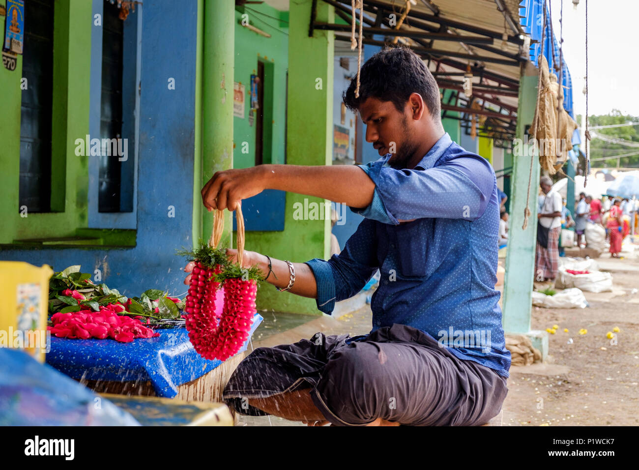 A young man making a flower garland, Madurai Flower market, Mattuthavani, Madurai District, Tamil Nadu, India. - Stock Image