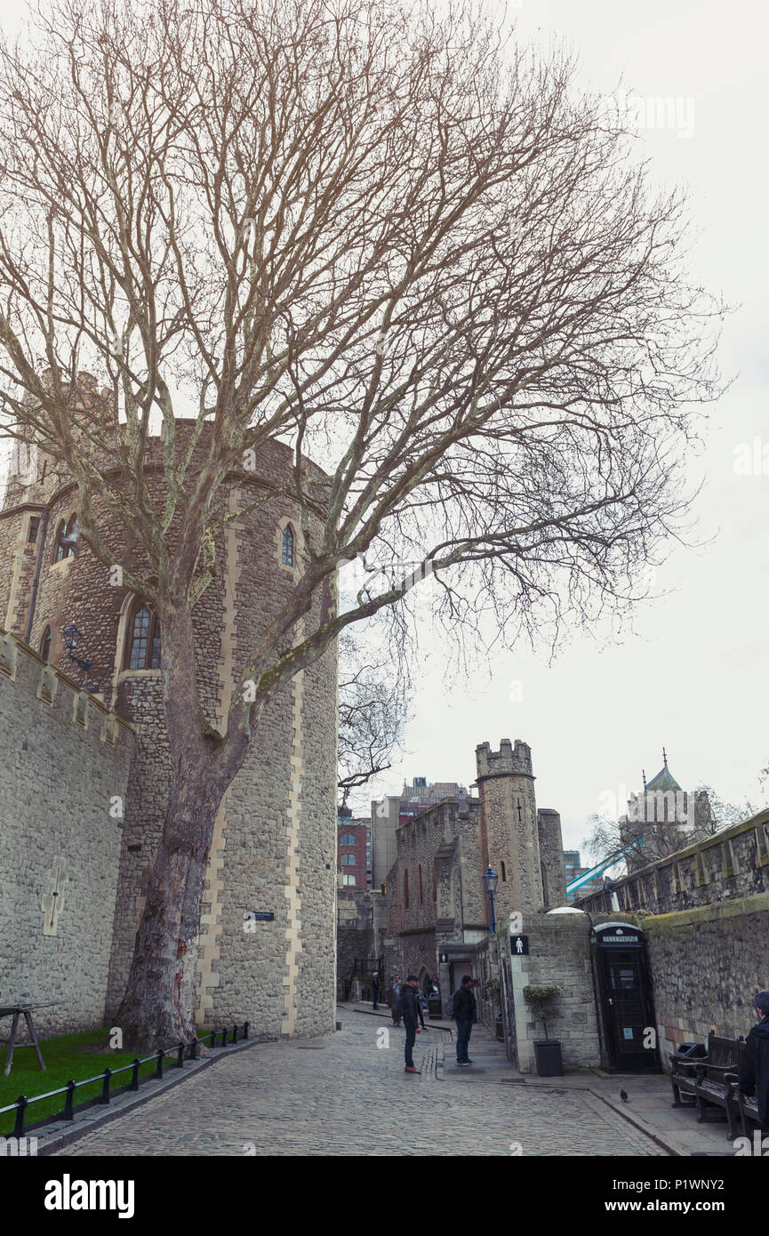 Old buildings and towers in the inner ward area of Royal Palace and Fortress of the Tower of London, a historic castle by River Thames London, England Stock Photo