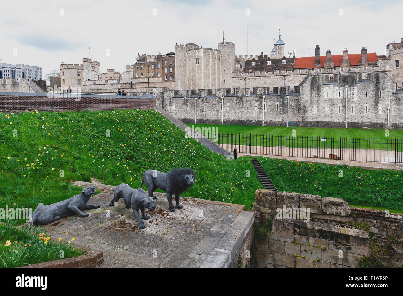 Wire animal sculptures of three Barbary lions by Kendra Haste installed at the Tower of London, historic castle by River Thames in London, England, UK - Stock Image