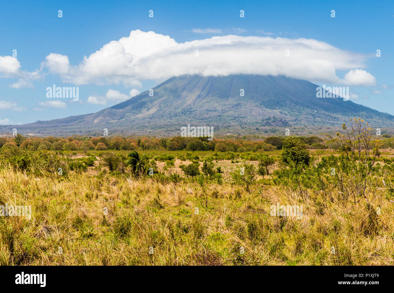 Ometepe Volcanic island Stock Photo