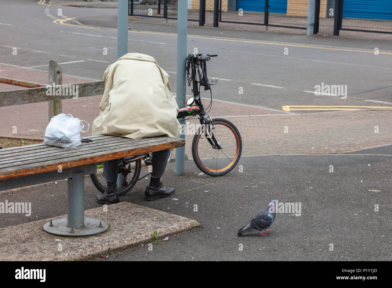 An elderly male cyclist sits on a bench in Penarth, and tries to mend a broken brake cable. A Pigeon watches on. Cardiff, Wales, UK - Stock Image